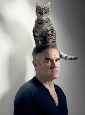 Morrissey loves cats more than  humans.